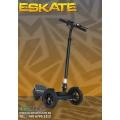 EcoRider Eskate